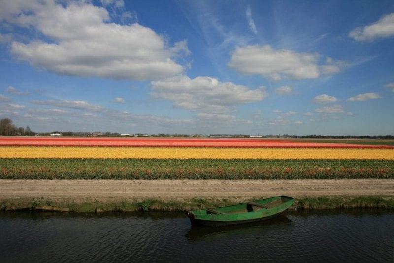 Keukenhof es famoso por su colorido