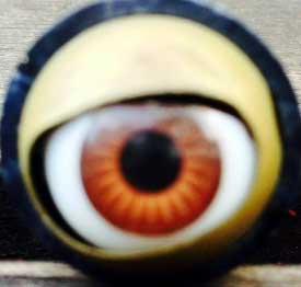 ojo cristal