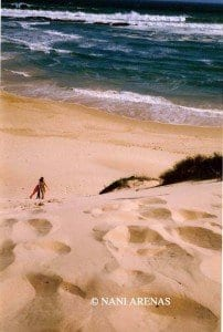 Playagarden route sudafrica nani arenas blog