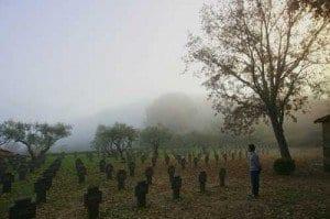 Cementerio Alemán, al lado del Monasterio de Yuste