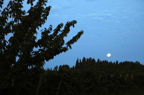 Luna llena en la Patagonia