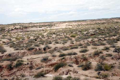 Rio Negro Patagonia Desierto argentina