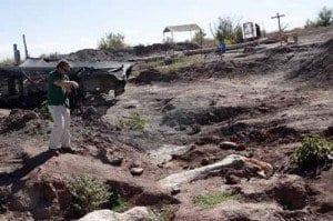 Centro paleontologico lago barreales femur dinosaurio