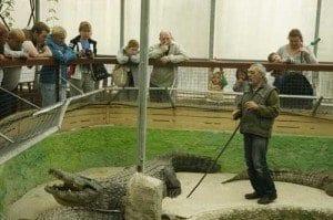 visita guiada por el cocodrilo park de torremolinos
