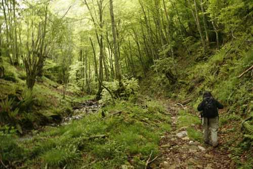 Redes Asturias senderismo