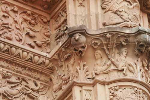 Salamanca rana universidad blog
