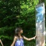 Actividades para niños en Suiza: creatividad a tope