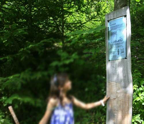 Suiza Leman Villars sur Ollon bosque cartel niños blog