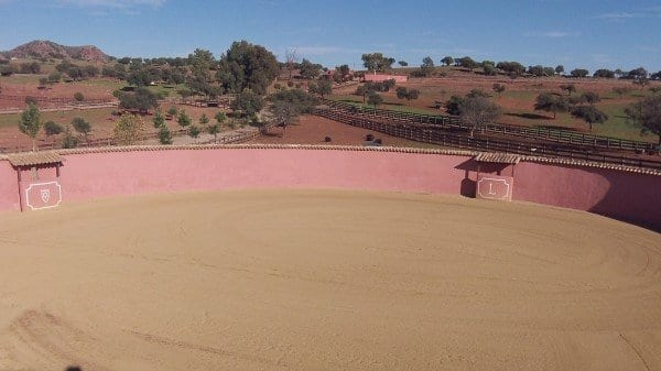 Dehesa La Marquesa Jaén