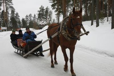 Paseo en trineo por la región del Saimaa, en Finlandia