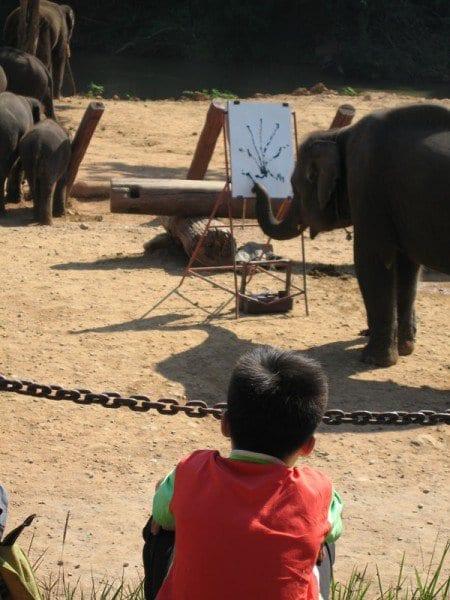 Elefente pintando tailandia