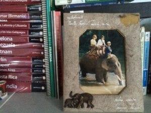 """Marco de fotos hecho con """"caca"""" de elefante"""