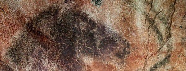 El la sala del panel Principal de la cueva de Tito Bustillo hay 13 caballos dibujados