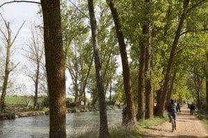 Cicloturismo en el Canal de Castilla