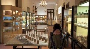 Museo Líber