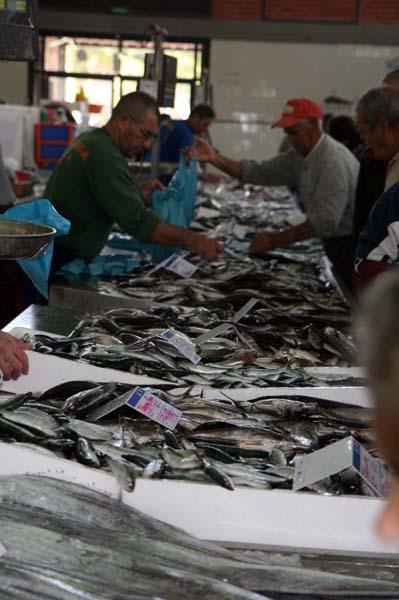 AAlgarve mercado pescado 2007 211