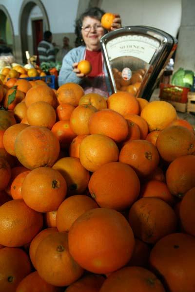 AAlgarve naranjas