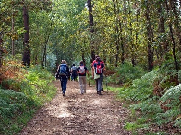 Peregrinos en el Camino Inglés (de Ferrol a Santiago)