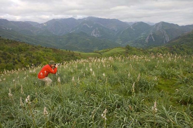 Parque Natural de Redes, Asturias
