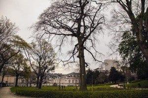 El parque D'Egmont es un jardín con encanto entre el Sablón y el boulevard de Waterloo