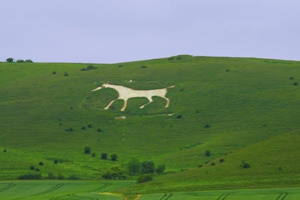 El caballo blanco de Westbury destaca en la colina de Bratton