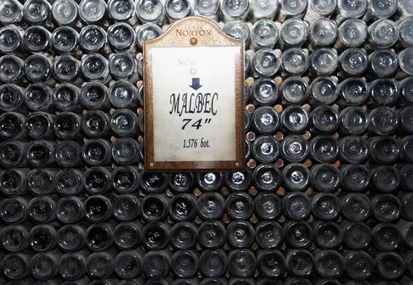 Botellas de malbec en la bodega Norton