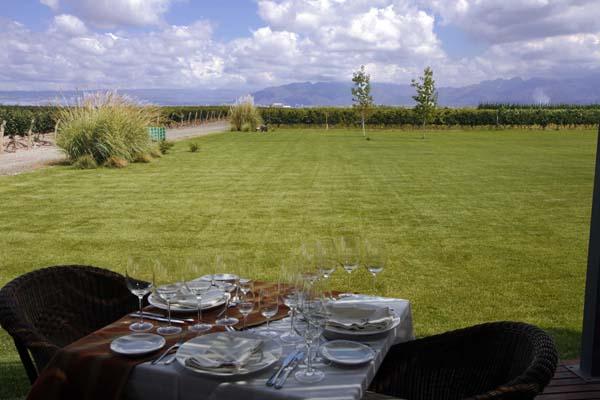 Muchas bodegas de Mendoza tiene restaurante con vistas a los viñedos
