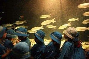 Niñas de visita en el acuario de Lisboa