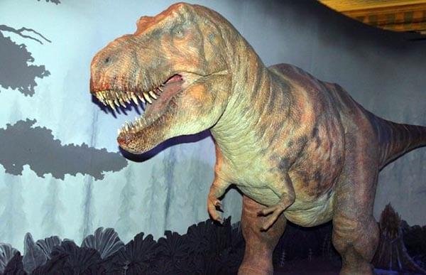 El fiero Tyranosuruis Rex asusta