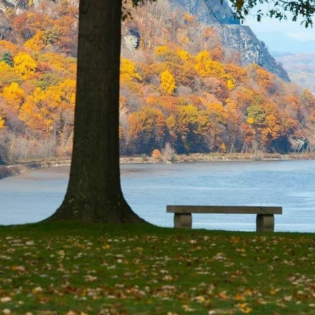 Estampa típica de otoño en el noroeste de EEUU