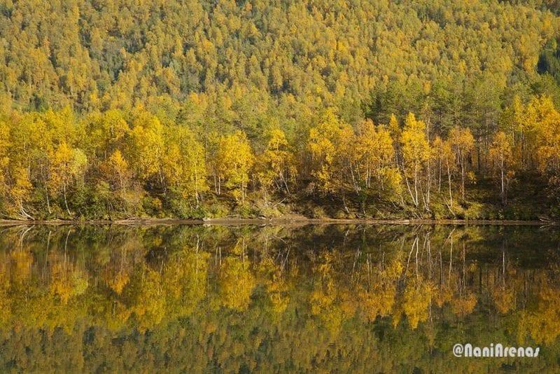 Colores del otoño en Noruega