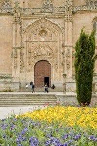 Salamanca fachada catedral y flores