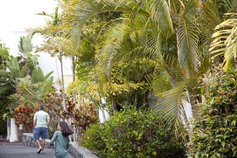 Las callejuelas del hotel son dignas de un jardín botánico