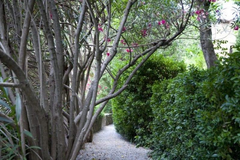 Otra vista del jardín del castillo