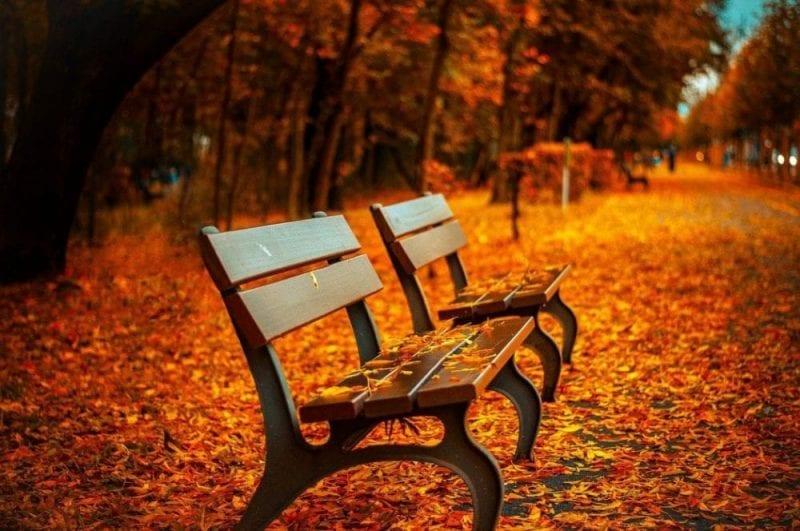 El otoño, estación ideal para las escapadas tranquilas