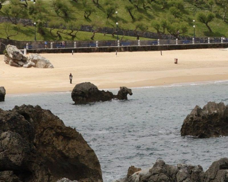 El camello se identifica mejor con marea alta