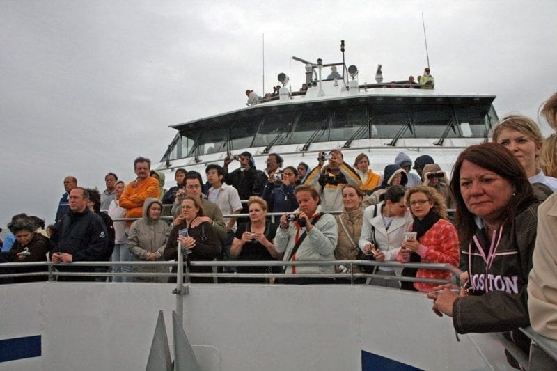 Turistas en barco para visionar ballenas