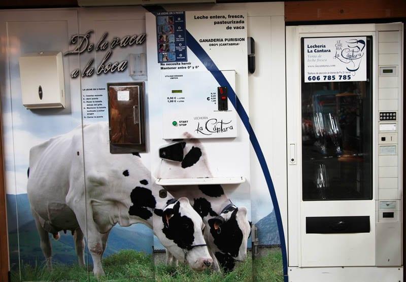 Dispensador de leche fresca en Santander