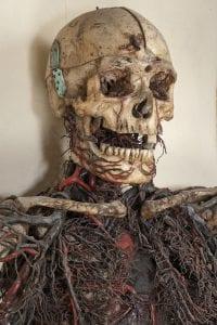 Sangro sentía gran curiosidad por los misterios de la anatomía humana