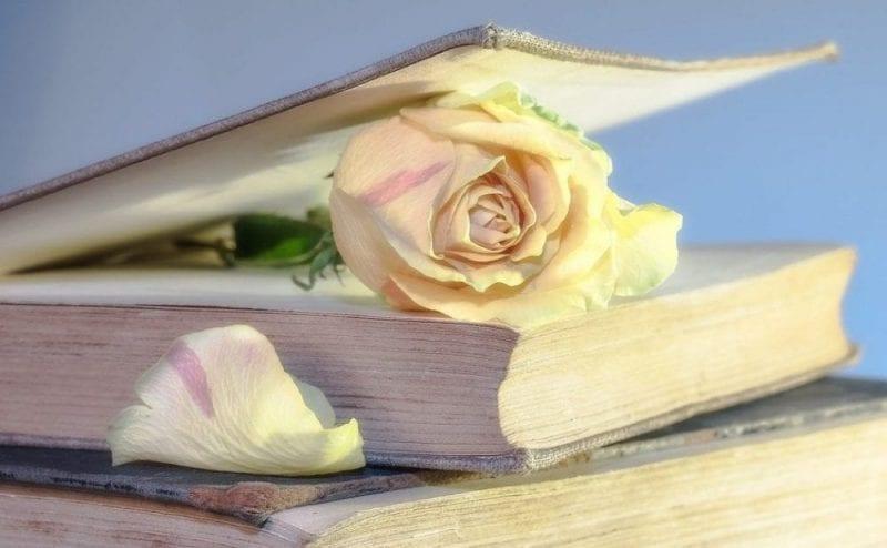 Rosas y libros, los iconos de Sant Jordi