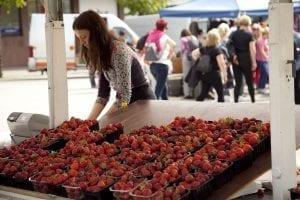 Puesto de fresas en Molde
