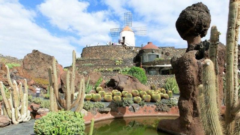 El jardín de cactus tiene forma de anfiteatro