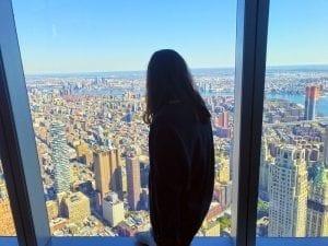 Vistas desde el mirador del World Trade Center