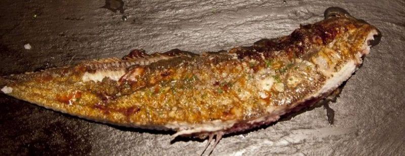 La variedad de pescados del cantábrico es muy rica