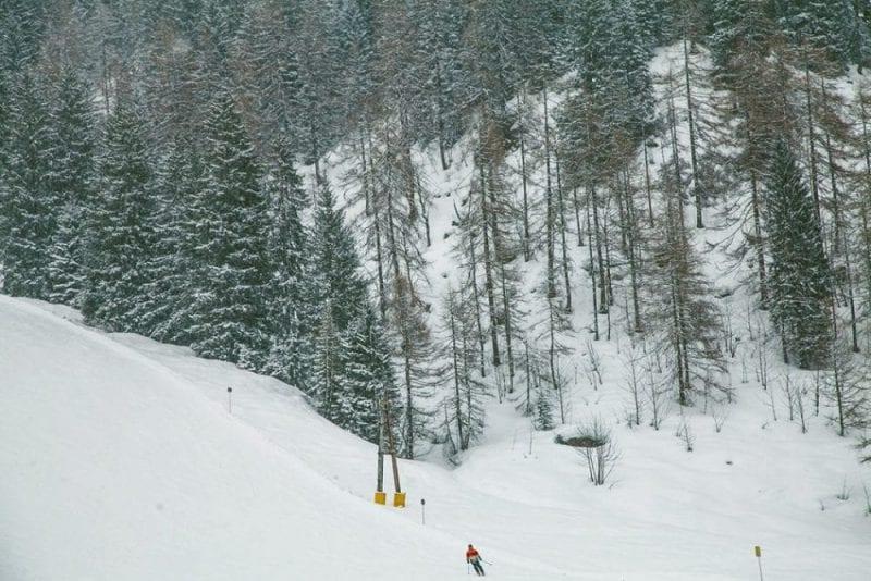 En Zauchensee esquías entre bosques