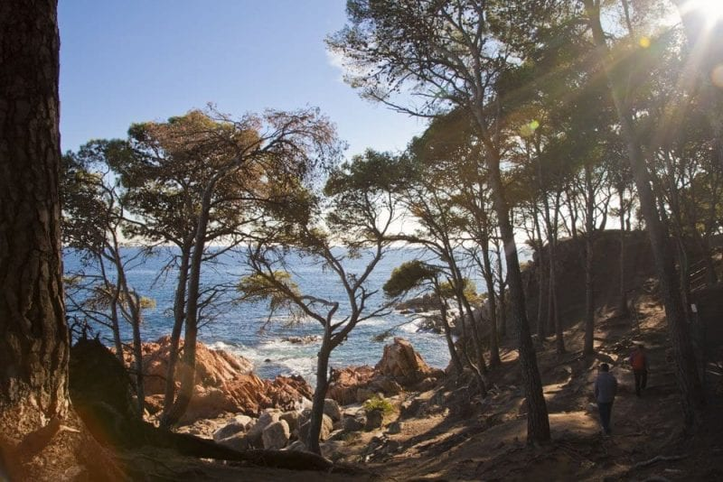 Alrededores de la playa del Castillo