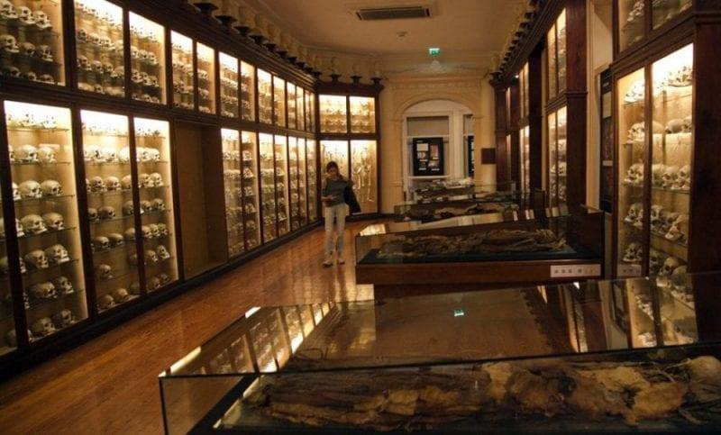 Sala de las calaveras del Museo Canario