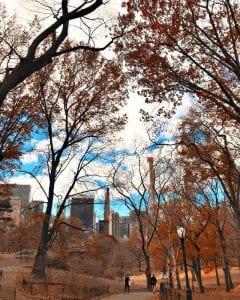 Central Park en diciembre