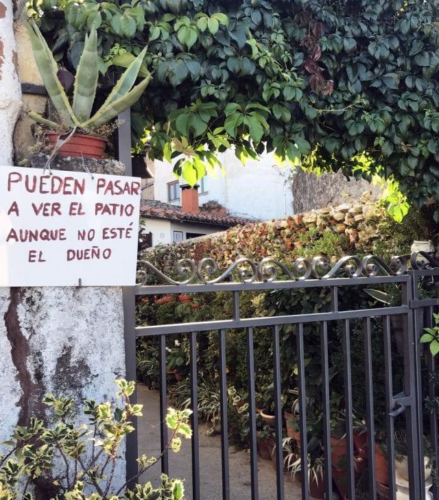 El patio de los cactus siempre tiene la puerta abierta
