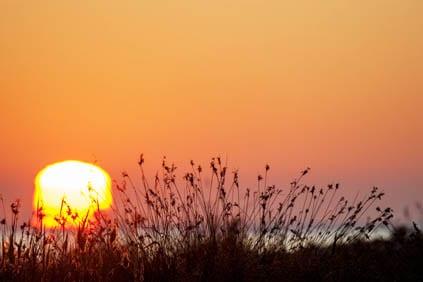 La luz del amanecer en la costa Daurada es especial